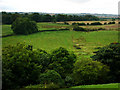 NU2405 : View west from Warkworth Castle by Chris Gunns