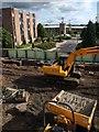 NT2772 : Building work at Pollock Halls by Derek Harper