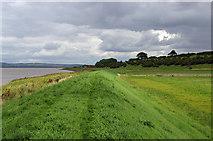 SE8924 : The Devil's Causeway near Whitton by David Wright
