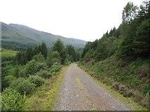 NN0550 : Track down towards Loch Creran, Glen Creran by Phillip Williams