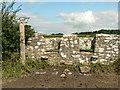 SS9774 : Coffin stile near Cowbridge by Mick Lobb