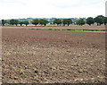 SO7729 : View towards Staunton Church by Pauline E
