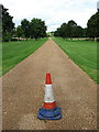 TG1124 : A lonely traffic cone by Evelyn Simak