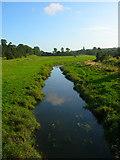TQ5203 : River Cuckmere by Simon Carey