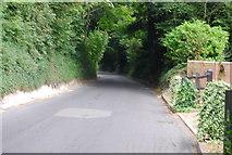 TQ5359 : Climbing up the Chalk escarpment near Otford. by N Chadwick