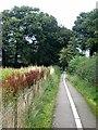 NY4157 : Path at Rickerby by Oliver Dixon
