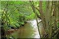SE6892 : River Dove by Mick Garratt