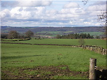 SK2262 : The stone circle near Robin Hood's Stride by Anthony