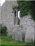 N3025 : St. Brigid's Church, Kilbride, Co. Offaly by Kieran Campbell