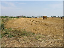 TR3256 : Field on outskirts of Sandwich by Nick Smith