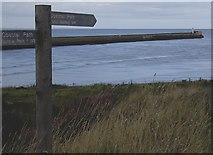 NJ9505 : Coastal Path signpost by Stanley Howe