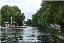 TQ0765 : Above Shepperton Lock by Graham Horn