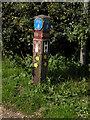TL5059 : Cycleway 51 marker post by Keith Edkins