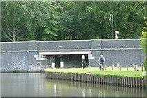 TQ0664 : River Wey Navigation by Graham Horn