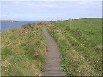 HY5042 : Coastal path to Castle O' Burrian by Nicholas Mutton