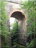 NY6366 : Viaduct over Poltross Burn by Antonia
