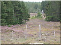 NN3277 : Deer shooting platform by Calum McRoberts