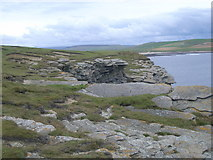 HY2328 : Cliff top on Brough of Birsay by Nick Mutton