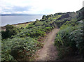 NH6851 : Footpath from Taindore to the shore by Julian Paren