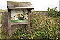 TG4821 : Interpretation board and anti tank cubes, Winterton  Dunes by Phil Champion