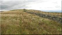 NN9507 : Dyke between Carlownie Hill and Eastbow Hill by Richard Webb