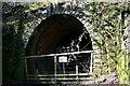 NU1010 : Edlingham Railway Tunnel by Dean Allison