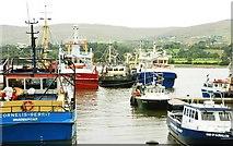J1418 : The Town Dock, Warrenpoint (3) by Albert Bridge