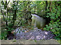SM9828 : Afon Anghof by ceridwen