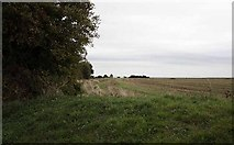 TM0308 : View of St Peter on the Wall, Bradwell juxta Mare, Essex by John Salmon