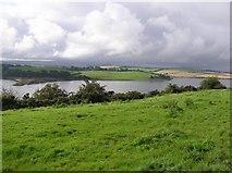 C3322 : Corcannon, Inch Island by Kenneth  Allen