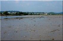 SY2591 :  Axe Estuary by Nigel Mykura