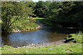 SN9084 : Ford across the Severn/Hafren by Nigel Brown