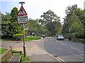 SE0063 : Humped Zebra Crossing by John Illingworth