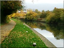 TQ1579 : Grand Union Canal, Hanwell, W7 by Phillip Perry