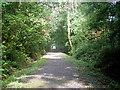 SN6673 : Ystwyth Trail - NCR 81/82 by Row17