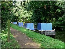 SO8685 : BWB maintenance boats, Stourton, Staffordshire by Roger  Kidd