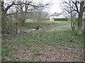 TM4194 : Bull's Green by Graham Horn
