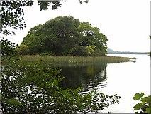 G7432 : Slishwood Island East by Oliver Dixon