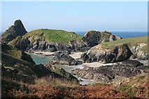 SW6813 : Landewednack: nearing Kynance Cove by Martin Bodman