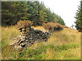 NS2885 : Dry-stone wall with tufts of vegetation by Lairich Rig