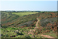 SW7214 : Landewednack: South West Coast Path by Martin Bodman