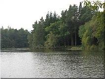 NT4227 : Bowhill, Upper Lake by M J Richardson