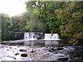 NS5859 : Waterfall in Linn Park by Alec MacKinnon