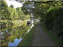 SE0424 : Rochdale Canal near bridge No. 4 by michael ely