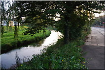 TR1558 : The Great Stour, Canterbury by N Chadwick