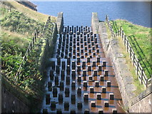 SE0204 : Yeoman Hey Reservoir Spillway by Paul Anderson