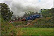 NZ8204 : 60007 'Sir Nigel Gresley' Heading South to Pickering by Mick Garratt