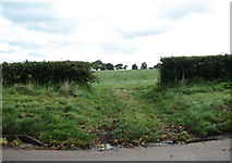 TF9331 : A gap in the hedgerow by Evelyn Simak