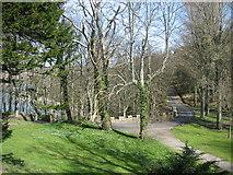 NS2209 : Culzean Country Park by Dannie Calder