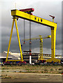 J3575 : Samson or Goliath? by Rossographer